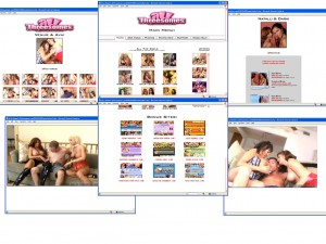 Members area screenshot from All Threesomes - click to enlarge