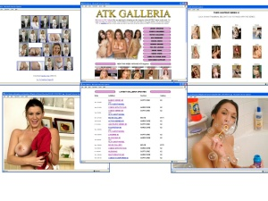 Members area screenshot from ATK Galleria - click to enlarge