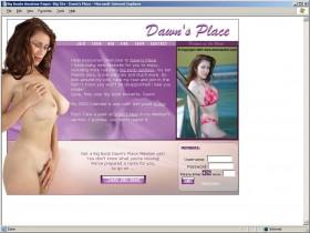 broken dildo in vaginas