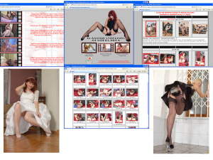 Members area screenshot from Glamour Stockings - click to enlarge