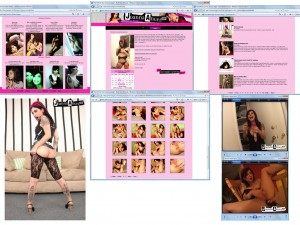 Members area screenshot from Joanna Angel - click to enlarge