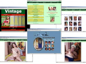 Members area screenshot from Mature Porn - click to enlarge