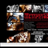 Metaphysex screenshot