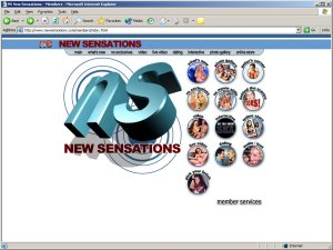 Members area screenshot from New Sensations - click to enlarge