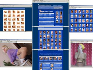 Members area screenshot from Pantyhose And Feet - click to enlarge