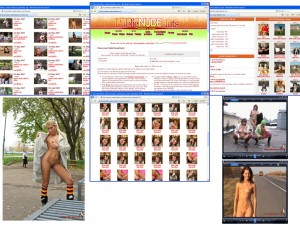 Members area screenshot from Public Nude Sluts - click to enlarge