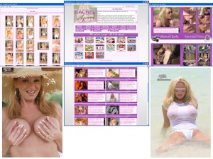 Members area screenshot from Rachel Aziani - click to enlarge