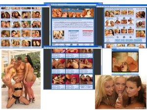 Members area screenshot from Sperm Swap - click to enlarge