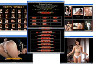 Members area screenshot from Tokyo Whores - click to enlarge